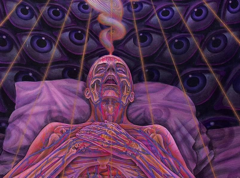 La Muerte Del Ego En Las Experiencias Psicodélicas Y En Los