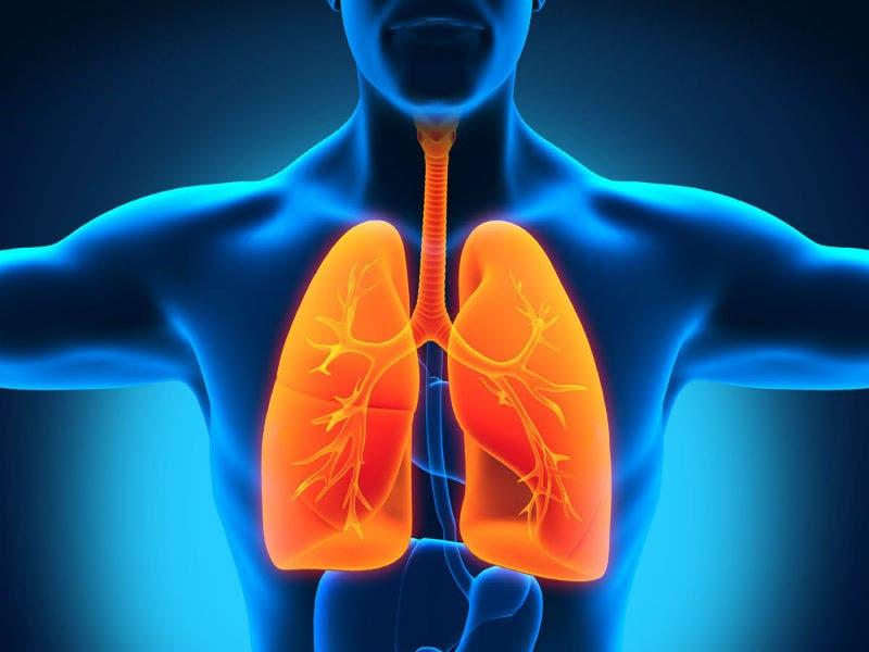 5 alimentos para cuidar la salud de tus pulmones